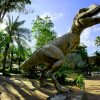 100-million-year-old bones of dinosaurs found in Meghalaya