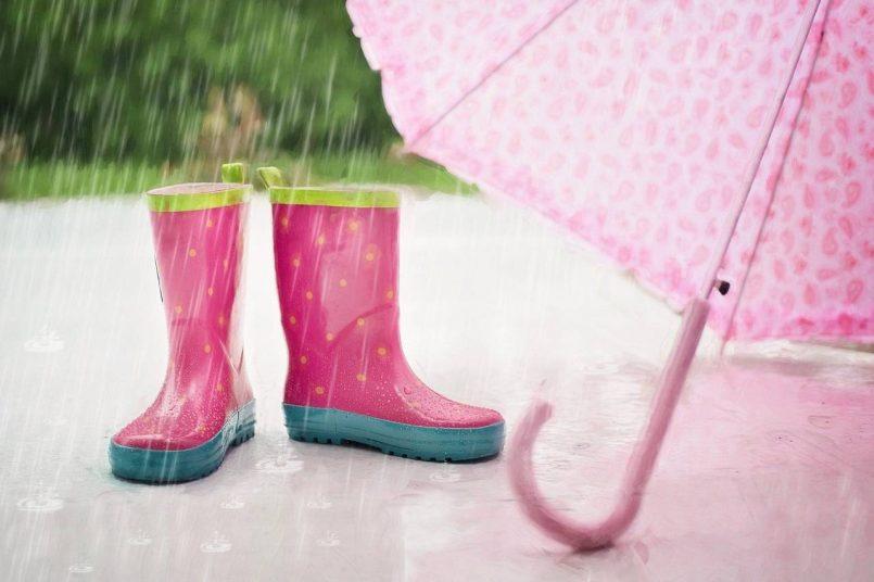 Weather News: IMD